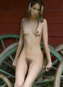 Hairy bush young beauty Alison with puffy nipples is nude be the sprocket wheels
